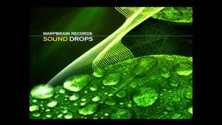 Sputer - Long way home (VA - Sound Drops 2010 Warp Brain Rec.)
