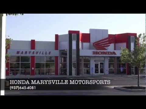 Honda marysville motorsports storm dog outdoors youtube for Honda marysville oh
