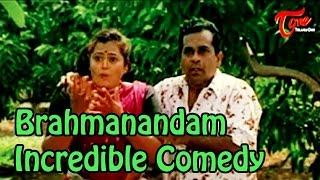 Video Vamsodharakudu Comedy Scenes || Brahmanandam Incredible Comedy Scene download MP3, 3GP, MP4, WEBM, AVI, FLV Agustus 2017