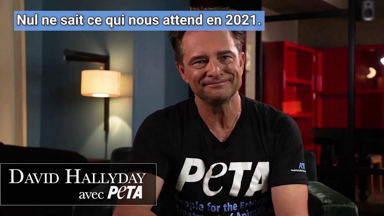2020 : une année pleine de progrès pour les animaux !
