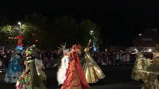 Bridgwater carnival 2018