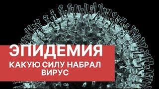 Эпидемия китайского коронавируса. Последние новости. Вирус в России 2020. Симптомы вируса
