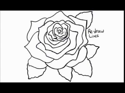 How to draw a rose open and in bloom youtube for How do you draw a rose step by step