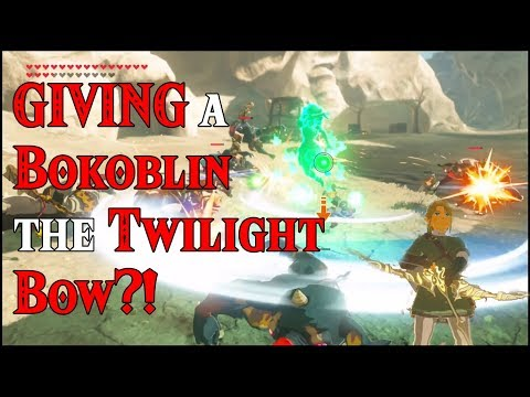 GIVING a Bokoblin the Twilight Bow?! The Gift of Giving in Zelda Breath of the Wild amiibo