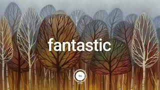 Autumn Leaves 🍂 | Lofi Acoustic