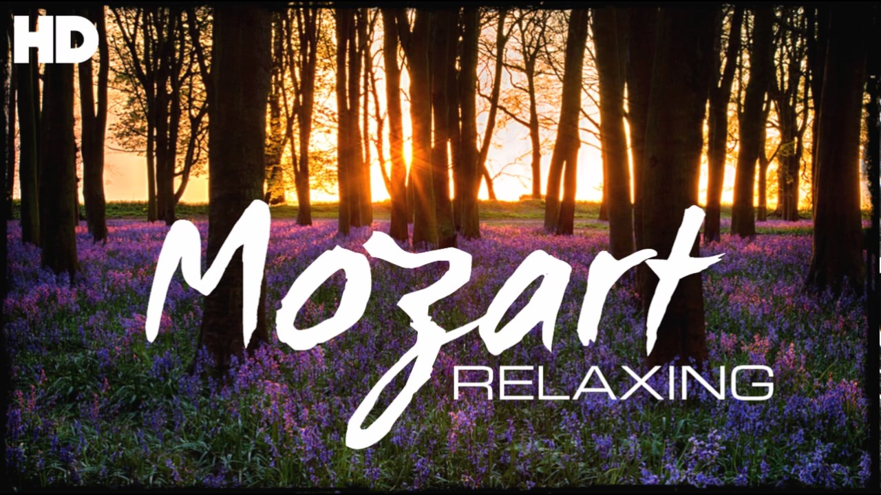 The Best Relaxing Classical Music Ever By Mozart Relaxation Meditation Reading Focus Youtube