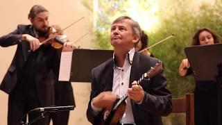 Alexei Birioukov & L'Ensemble Microcosme - Variations concertantes, Koulikov