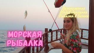 Индивидуальная Морская Рыбалка в Белеке Tunar Travel