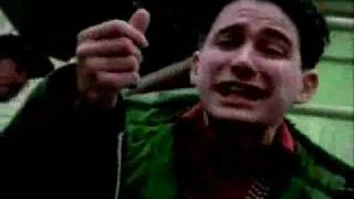 Beastie Boys - Putting shame in your game