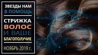 Ноябрь 2019 г. | Стрижка волос и ваше благополучие