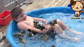 ►Funny And Cute Animals Videos Compilation 2018 [HD] #8 - Cute VN