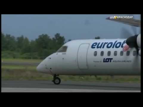 Из Краснодара возобновили прямые рейсы в Калининград