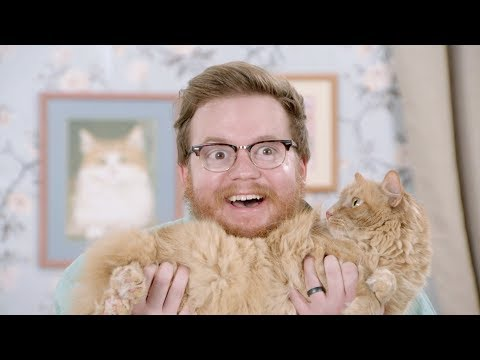FINALLY, YOU CAN RENT CATS! | 877-CATS-NOW | J.G. Wentworth