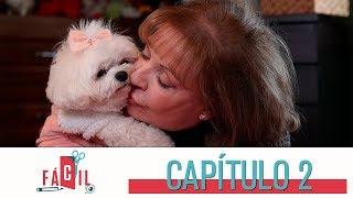 Fácil: elimina rápidamente el olor a orina de tu mascota | Caracol Televisión