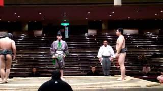 豊木村 勝ち 平成27年大相撲五月場所 2015-05-18