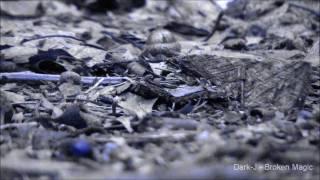 Dark-J - Broken Magic (Industrial Dub-Step)