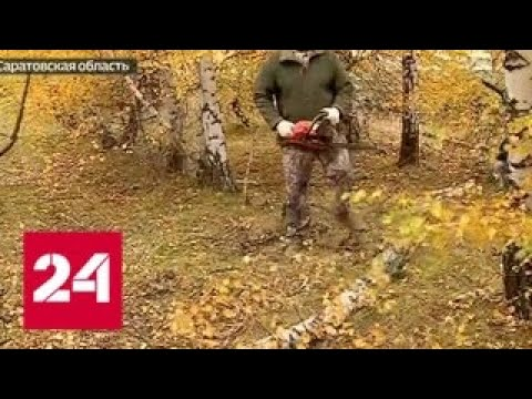 Из-за министра природных ресурсов Саратовской области бюджет не досчитался большой суммы - Россия…