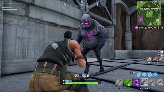 Fortnitemares solo