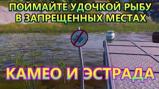 Поймайте с помощью удочки по предмету в разных местах где установлены знаки запрещающие ловить рыбу
