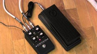 Moog MF Drive miniFooger overdrive pedal demo with Expression Pedal