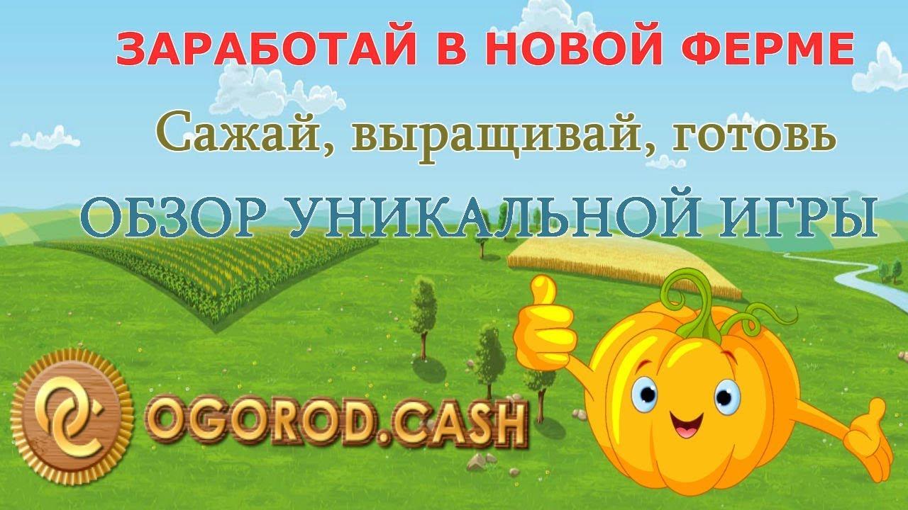 Ogorod.cash - Ферма нового поколения,заработать легко