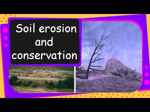 Soil erosion is on the rise scientists say for Soil erosion meaning in hindi