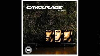 Camouflage - Perfect