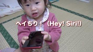 可愛らしくHey!Siri!と言う1歳児&コストコ買ったもの紹介 thumbnail