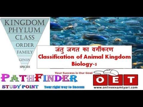 Classification of Animal Kingdom(जंतु जगत का वर्गीकरण) Biology 5