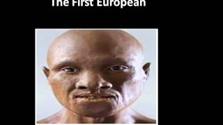 Repeat youtube video What is the difference between Black People and ...