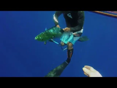 spearfishing marshall islands