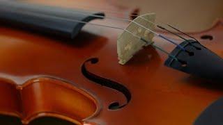 ヒーリング・ホイッスルによる「カントリー・ロード」(ジブリ作品『耳をすませば』主題歌)の演奏です。 【Take Me Home, Country Roads/Healing Whistle...