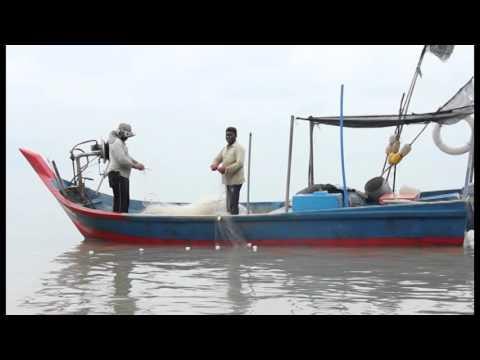 Dokumentari Pendek Nelayan (Alunan Ombak)