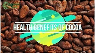 9 Impressive Benefits Of Cocoa or Cacao | Organic Facts