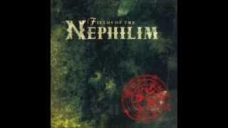 Fields of Nephilim - Never Let Me Down Again (Depeche Mode Cover)