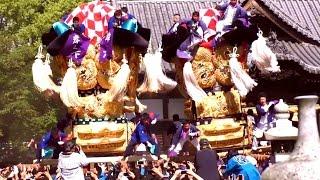 2016【春】太鼓祭り 《坂出・新居浜太鼓台フェス ◎午後の部》 総社神社