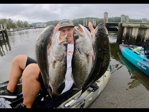 EASIEST WAY TO CATCH GIANT SPECKLED TROUT! FISHING TUTORIAL FROM KAYAK