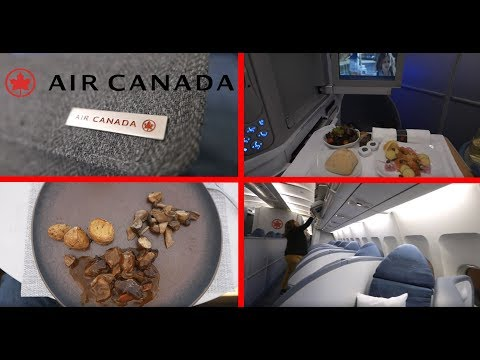 Air Canada, Toronto To Rome Trip Report, Business Class With Air Canada Signature Suite / De-Icing