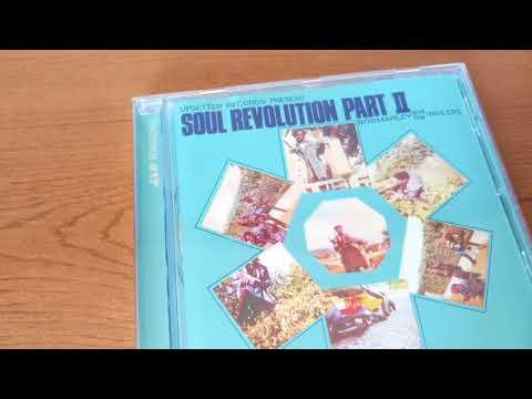 Bob Marley - Soul Revolution CD Album