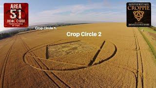 Crop Circles 2015 Etchilhampton Nr Devizes Wiltshire