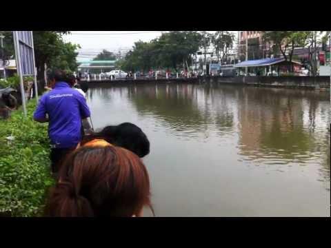 สถานการณ์น้ำท่วมริมคลองประปา 20 ตค.
