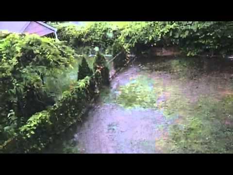 Neighbor flooding my yard
