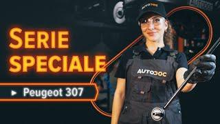 Smontaggio Kit riparazione pinza freno OPEL - video tutorial