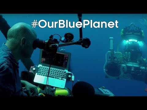 Discovering underwater lake ecosystems for Blue Planet II #OurBluePlanet - BBC Earth