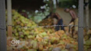 CNN Freedom Project- West Africa Slavery