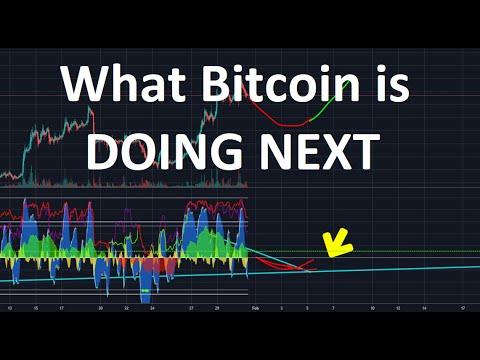 Youtube api crypto trading