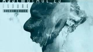 Assemblage 23 - Bravery (Solitary Experiments Rmx)