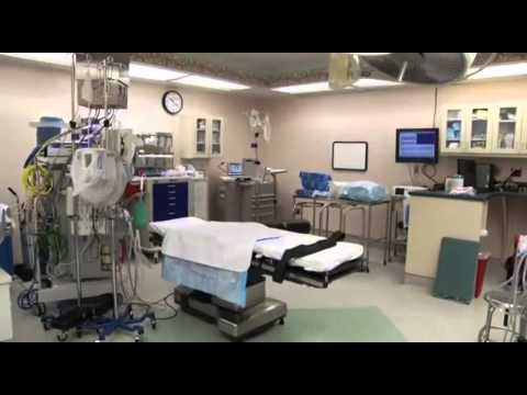 What to Expect:  Having a Baby at Johns Hopkins Bayview Medical Center