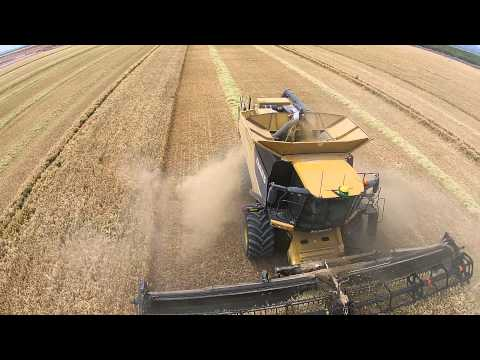 Barley Harvest 2015 5
