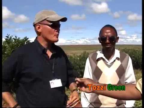 Publi-reportage TOZZI GREEN - Satrokala / Région Ihorombe - Version Malagasy